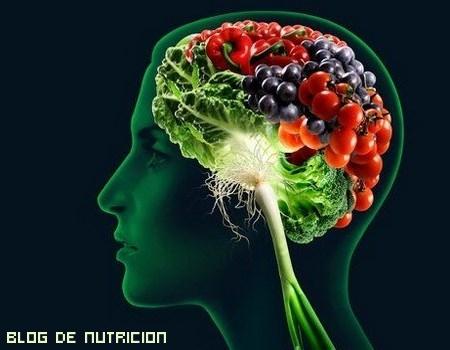 Las mejores dietas para nuestro cerebro