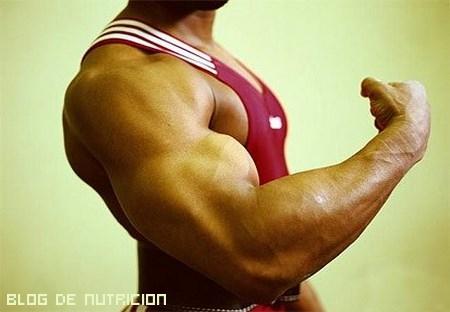 Dietas para deportistas