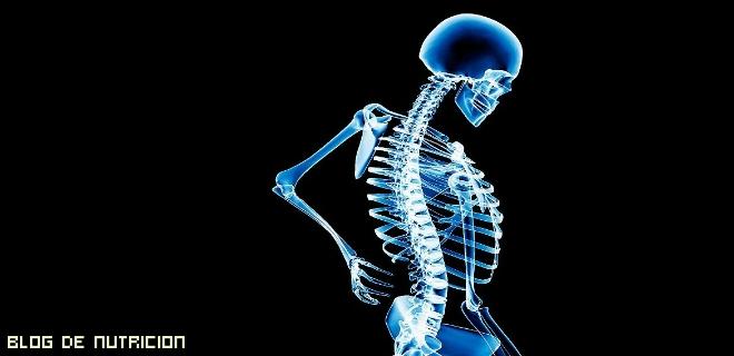 alimentos que favorecen a los huesos