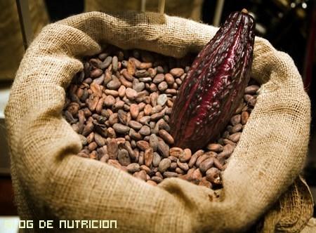 minerales que contiene el cacao