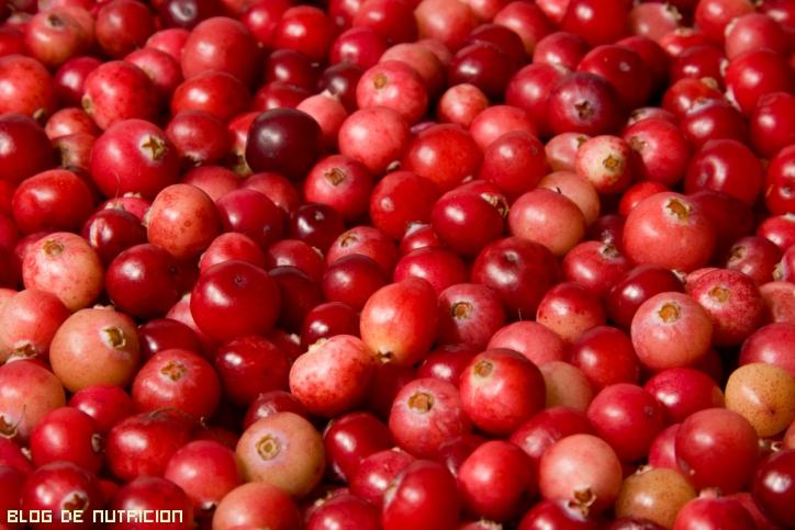 frutos rojos para la salud