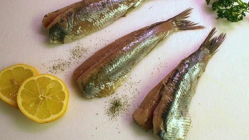 pescados más nutritivos